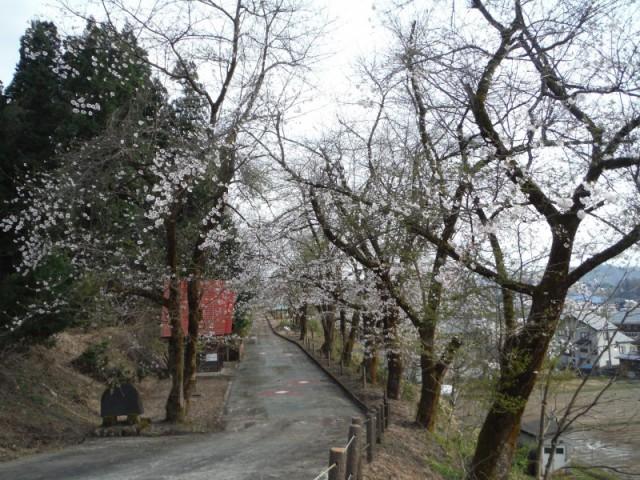 東川口農村公園?